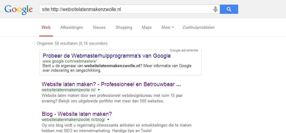 Google indexatie checker