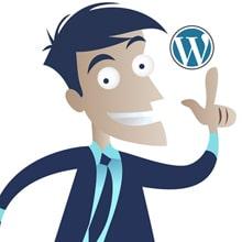 man met wordpress plugins