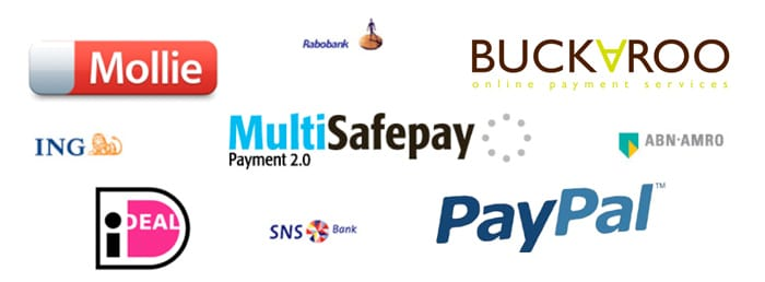Voorbeelden payment service providers
